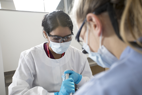 Students of Stony Brook School of Dental Medicine's Dental Assistant Program